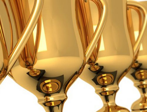 Awards – my over view          פרסים